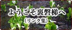 ようこそ裏磐梯へ(リンク集)